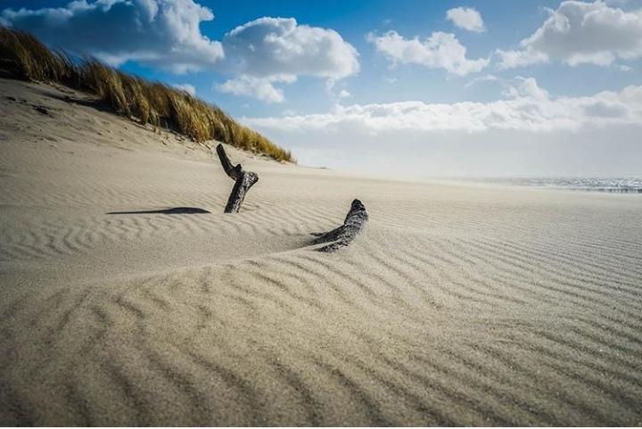 Strandjutten: zoeken wat de zee heeftachtergelaten