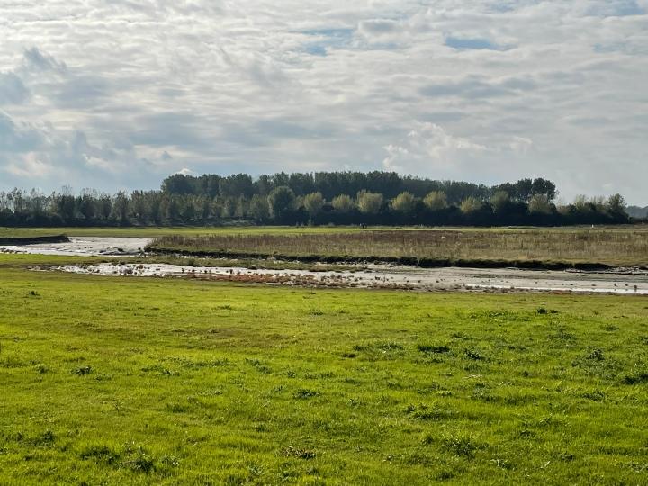 Achter de dijk in het land van polders enkreken